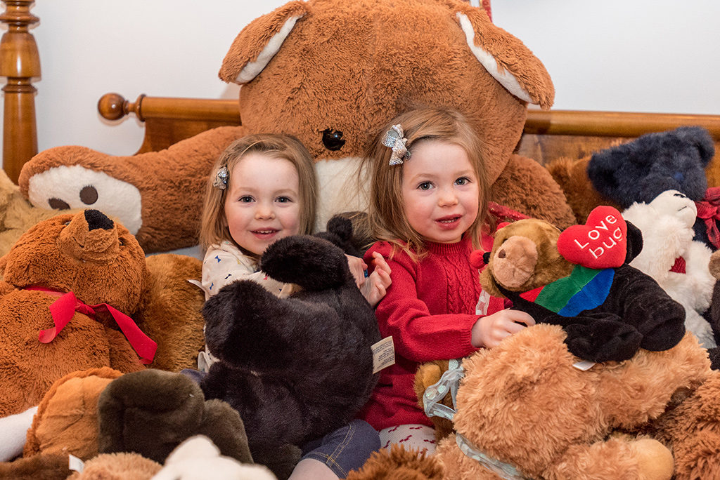 Martha's Vineyard Teddy Bear Suite Fundraiser Helps Fight Childhood Hunger With Boys & Girls Club Healthy Happy Kids Program - Donate Now