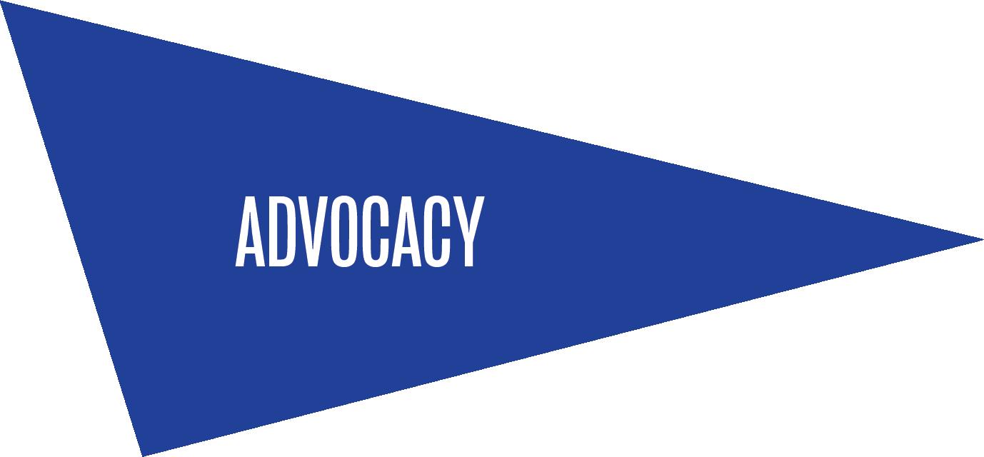 BIRFAsset Advocacy (1)