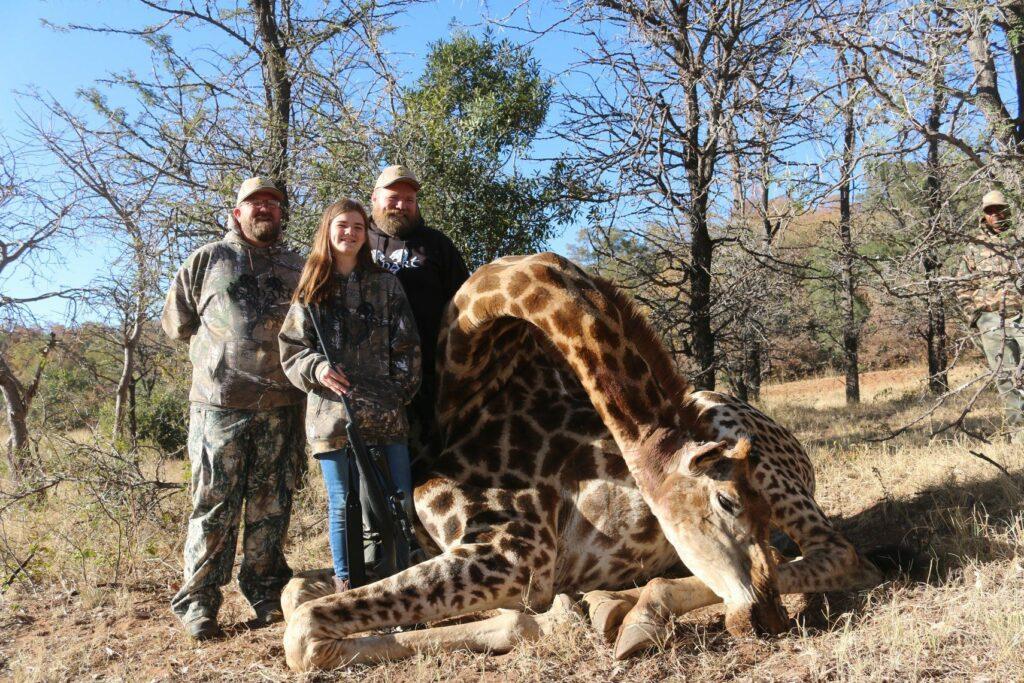 Shayleigh's Giraffe
