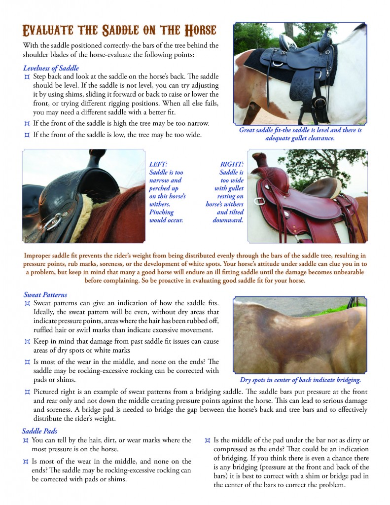 CircleY-saddle-fitting-2013_Page_3