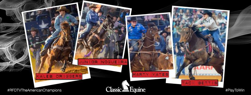 Classic Equine Products for Ropers and Barrel Racers