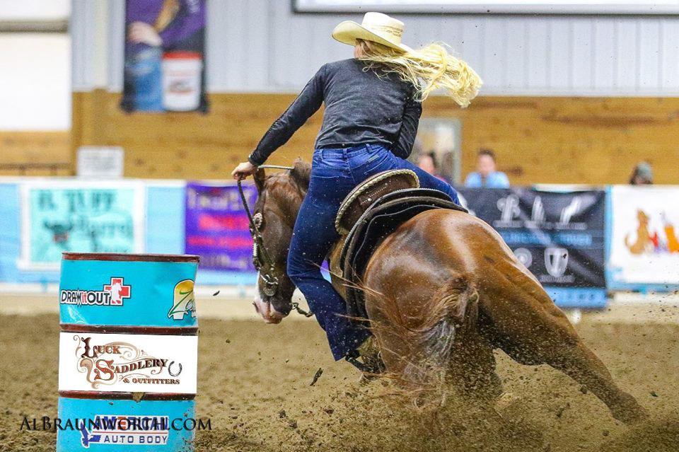Luck Saddlery Horse Ridder Kricket Gintner