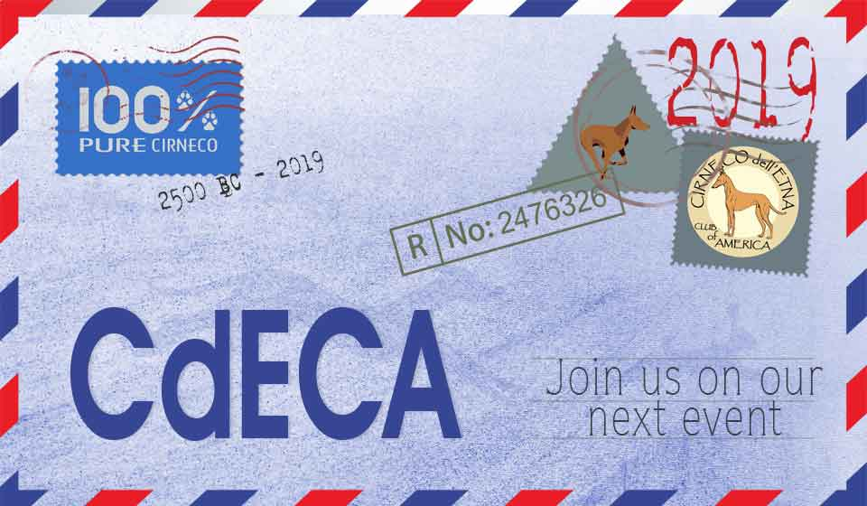 CdECA Coursing Ability Tests – November 29-December 1, 2019