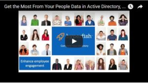 Get the Most From Your People Data in Office 365 and SharePoint