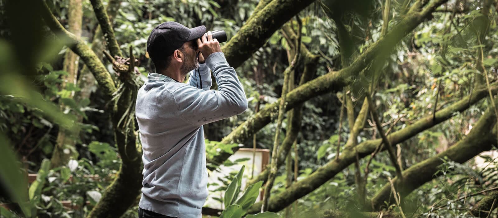birding colombia hacienda la sierra hotel coffee experience