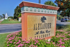 Alexander at Palm Court-16
