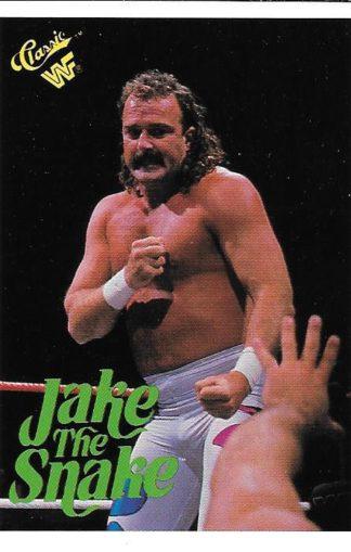 1990 Classic WWF Jake The Snake Roberts