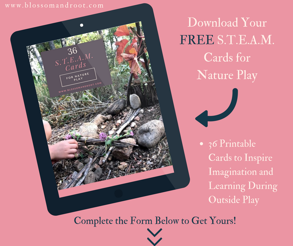 steam in nature study freebie for homeschool