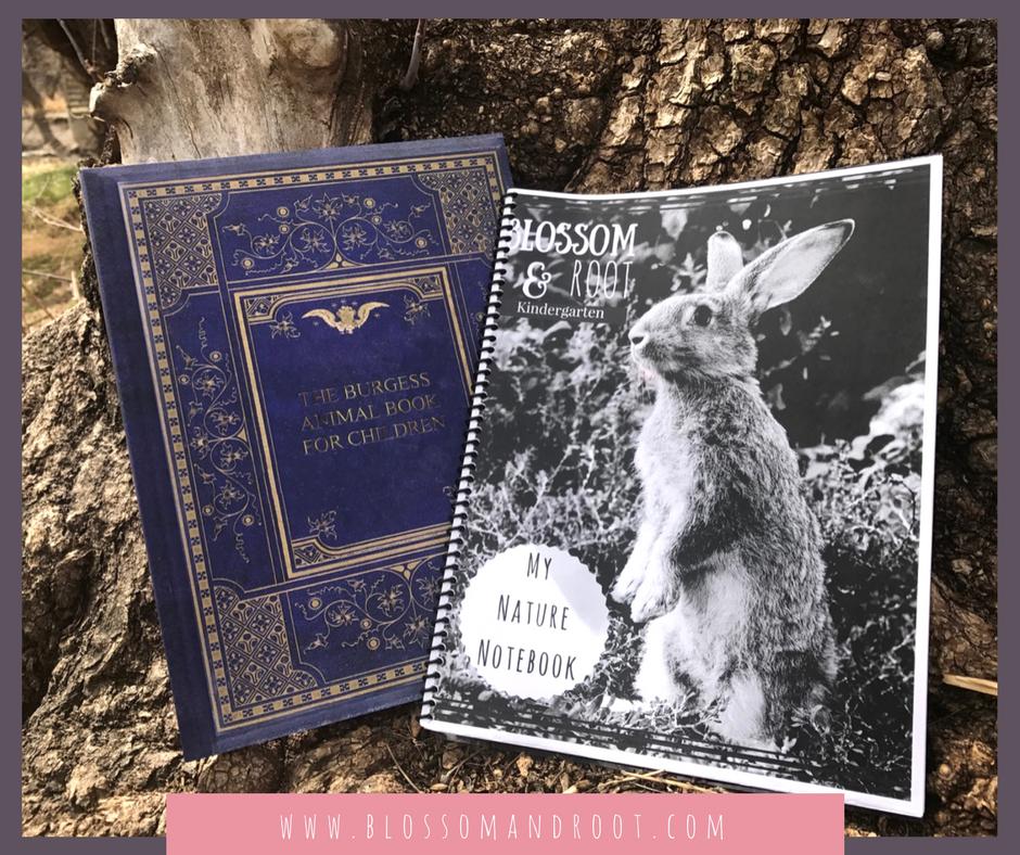 burgess animal book for children nature lore homeschool kindergarten