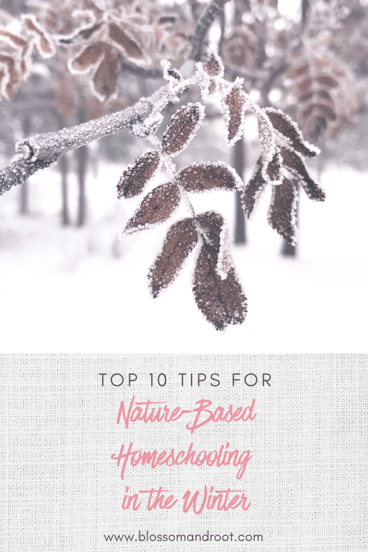 10 tips for nature based homeschooling in the winter