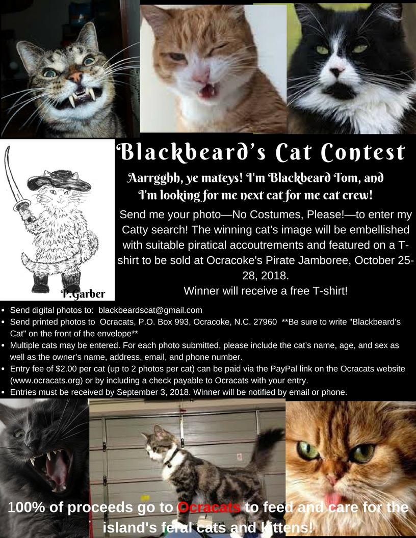 Blackbeard's Cat--limit 2