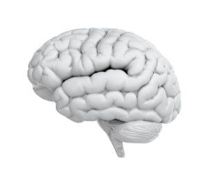 concussion education, about concussion, what is a concussion