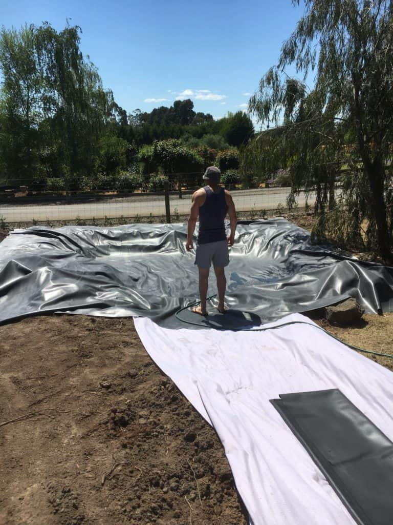 DIY wildlife pond construction