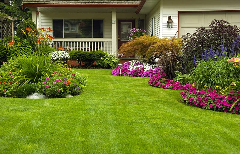 GHMS Home Garden Landscaping Services