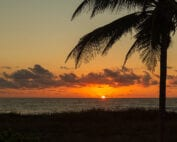 Home Management Delray Beach