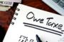 freelancer or sole proprietor