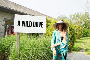 A-Wild-Dove.jpg