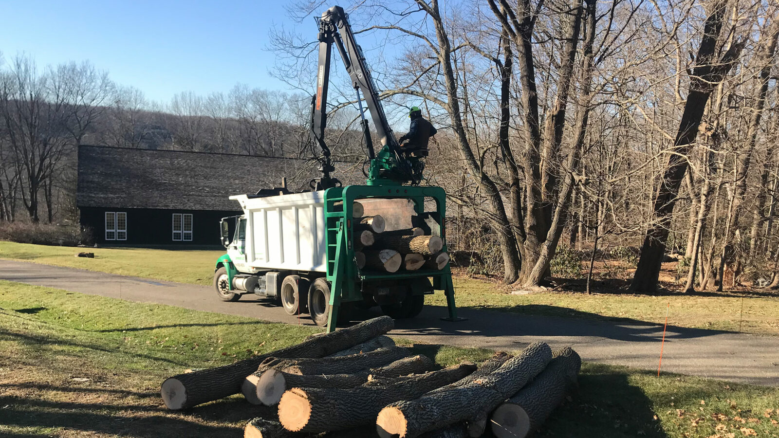 Newtown Tree Service, LLC