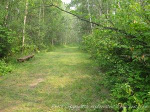 Old Edmonton Trail Sherwood Park Natural Area