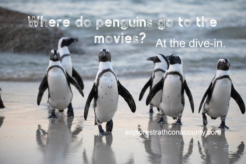 joke about penguins