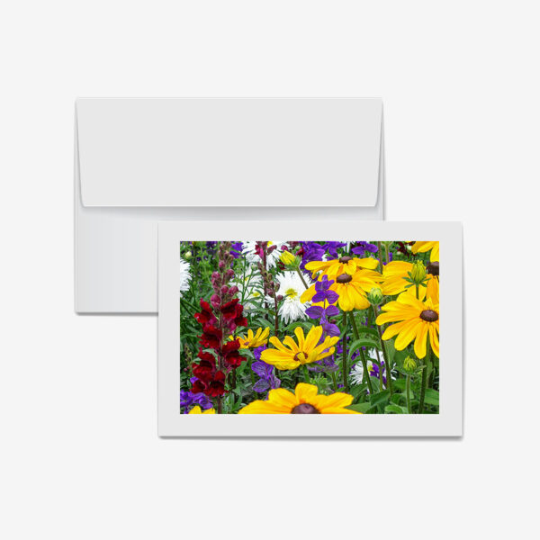 Mixed Flowers, Banff, Canada