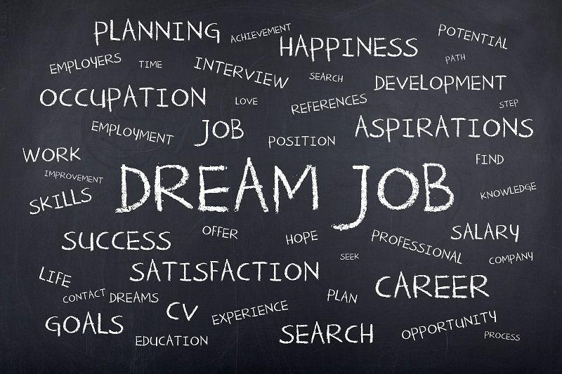 Comp Dream Job