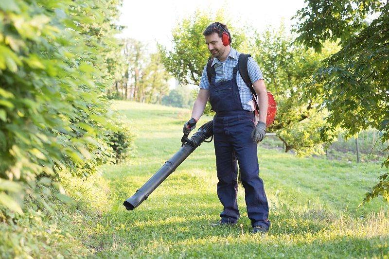 Gardener clearing up the leaves using a leaf blower cm