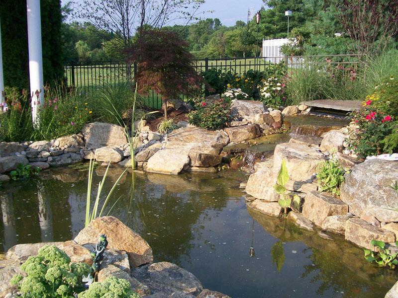 Poolscape Koi Pond, Chester NJ