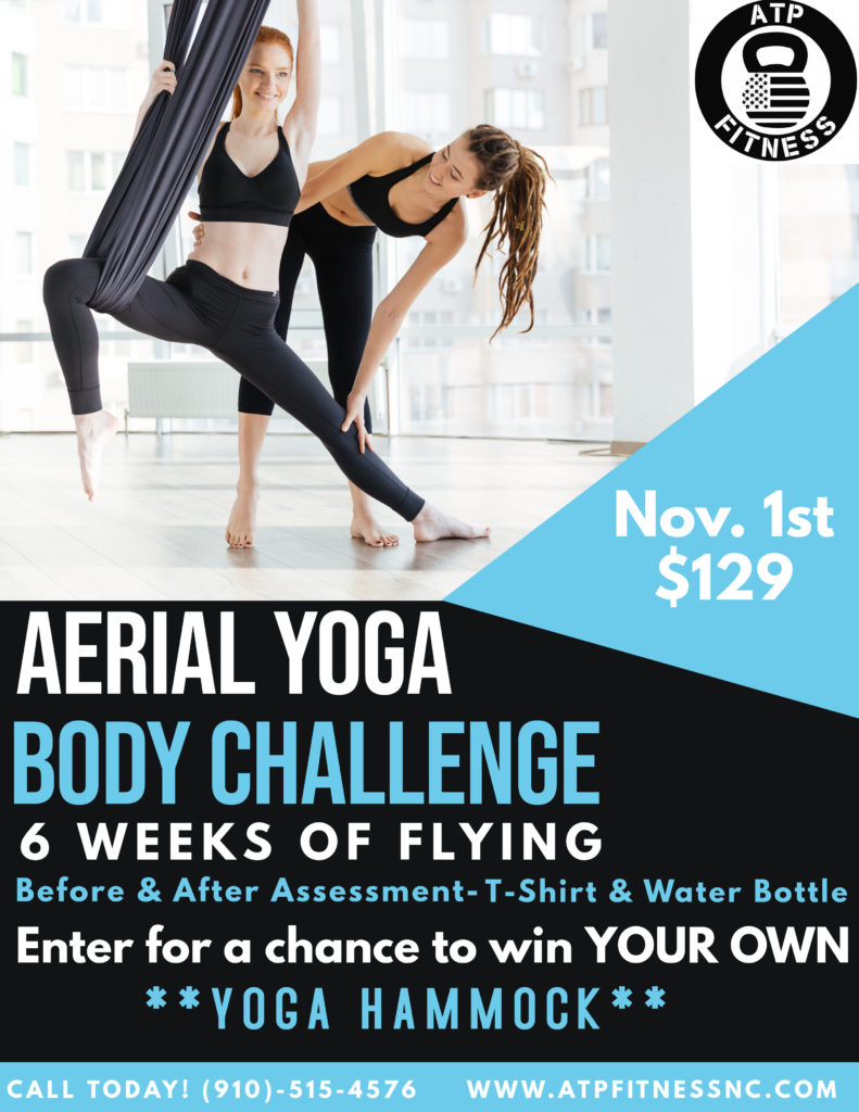 Aerial Yoga Body challenge1