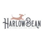 Harlow Bean | Animal Charity