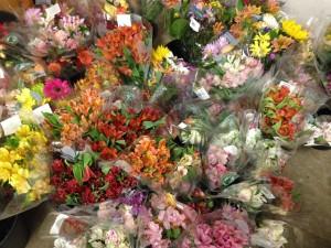 lovelyflowersweeklyfromTJ
