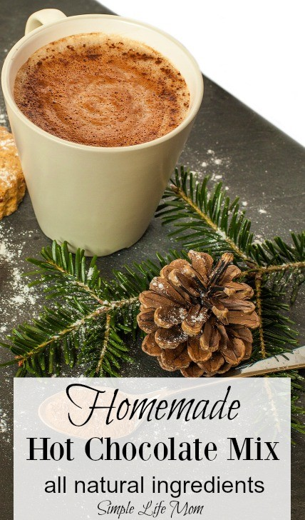 Homemade Hot Chocolate Mix - all natural ingredients from Simple Life Mom