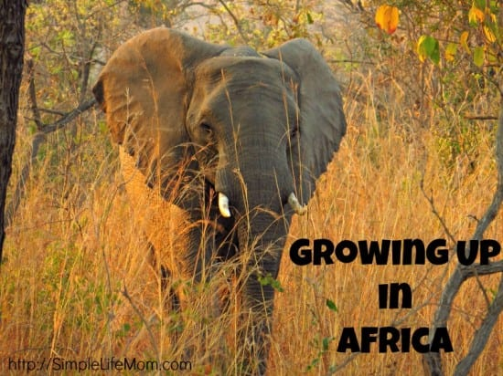 Growing Up in Africa - my wonderful childhood and its effect on my natural living lifestyle