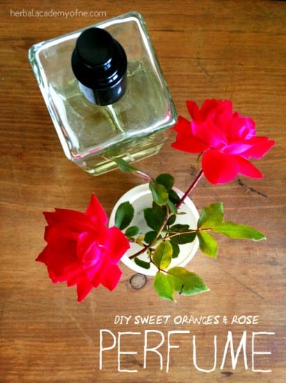 27 Last Minute DIY Gift Ideas - DIY Sweet Orange and Rose Perfume from Herbal Academy of New England