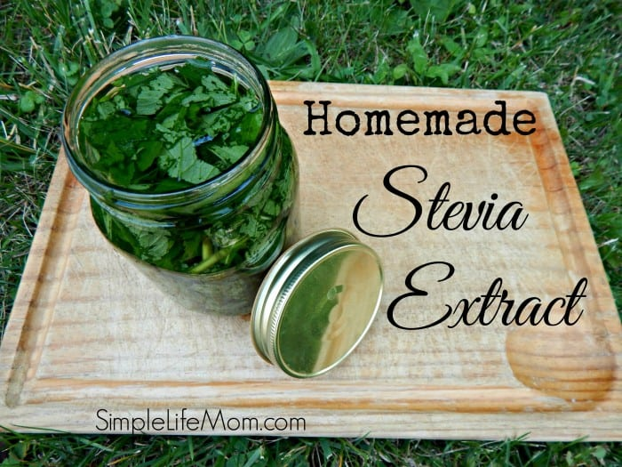 Homemade Stevia Extract by Simple Life Mom