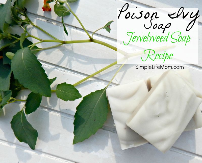 How to Make Poison Ivy Soap with Jewelweed