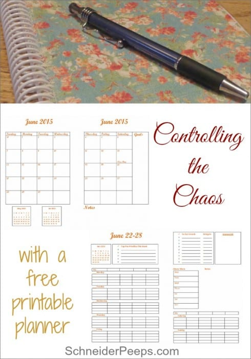 17 Natural Back to School DIYs - Free Printable from Schneider Peeps