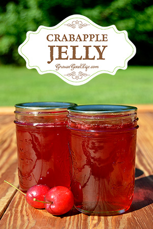 12 Apple Recipes for Fall - crabapple-jelly-vert-growagoodlife