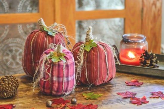 Featured on the Homestead Blog Hop -No-Sew-Shirt-Sleeve-Pumpkins