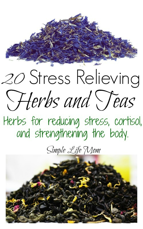 20 Stress Relieving Herbs and Teas from Simple Life Mom