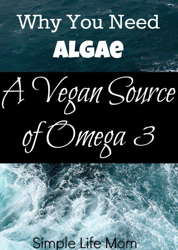 Why You Need Algae: A Vegan Source of Omega 3