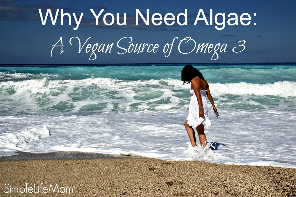 Why You Need Algae: A Vegan Source of Omega 3 from Simple Life Mom #ad #sk
