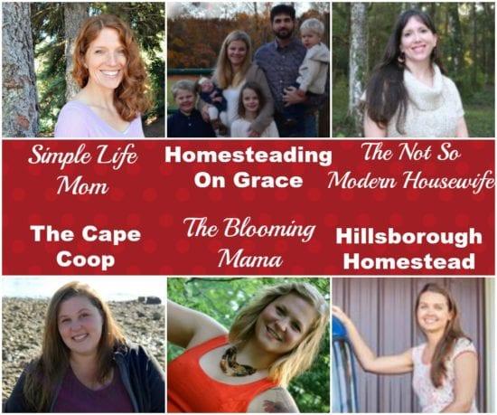 Homestead Blog Hop Hosts Jan 2017