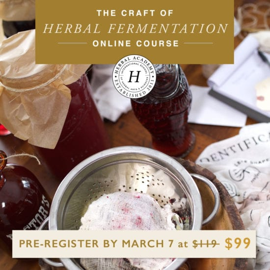 Homestead Blog Hop - The Craft of Herbal Fermentation