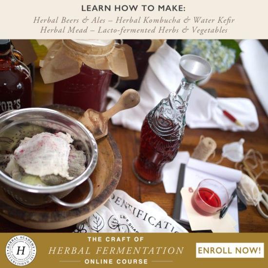 Homestead Blog Hop - The Craft of Herbal Fermentation promotion