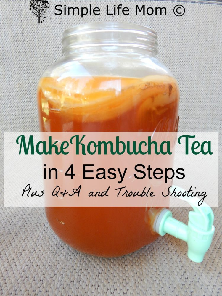 How to Make Kombucha – Easy Step by Step Instructions
