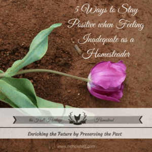 Homestead Blog Hop Feature from Hall Heritage Homestead