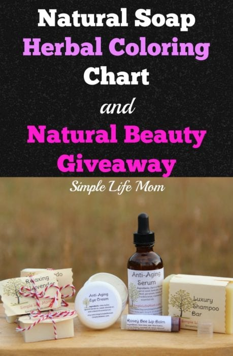 Color Soap Naturally and Natural Beauty Giveaway with Simple Life Mom