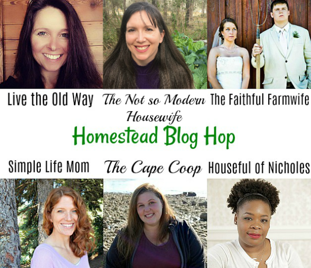 Homestead Blog Hop Hosts January 2018