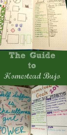 Homestead Blog Hop Feature - homestead-bujo-guide